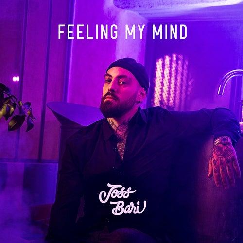 Feeling My Mind von Joss Bari