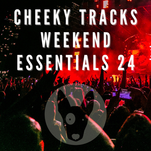 Cheeky Tracks Weekend Essentials 24 by Various Artists