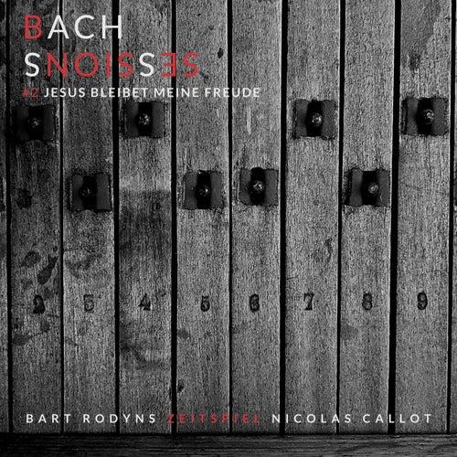 J.S. Bach: Jesus bleibet meine Freude, BWV 147 by Nicolas Callot