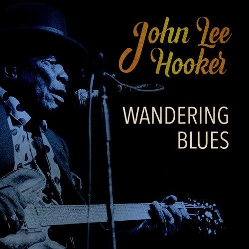 Wandering Blues by John Lee Hooker