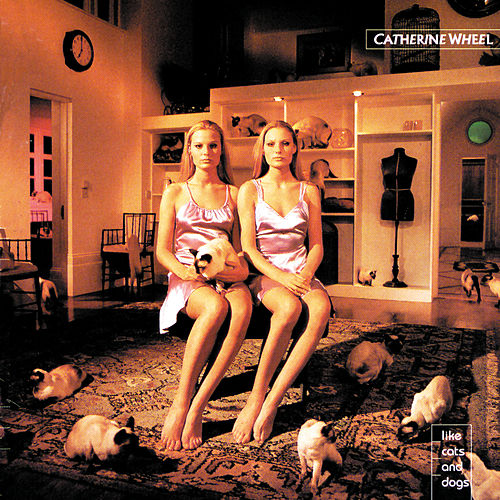Like Cats And Dogs von Catherine Wheel