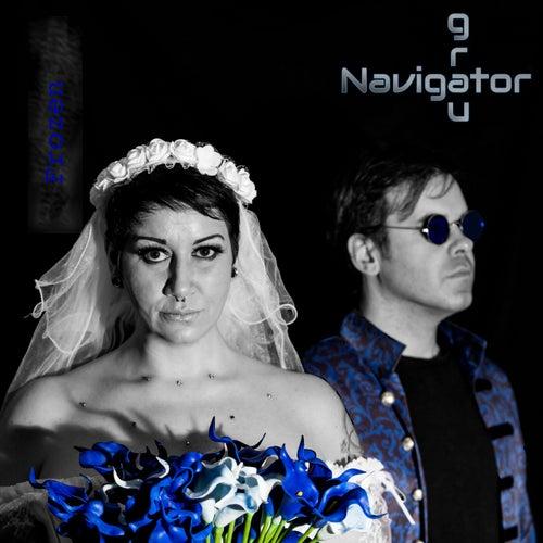 Frozen de Navigator grau
