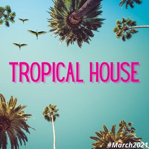 Tropical House by Francesco Digilio