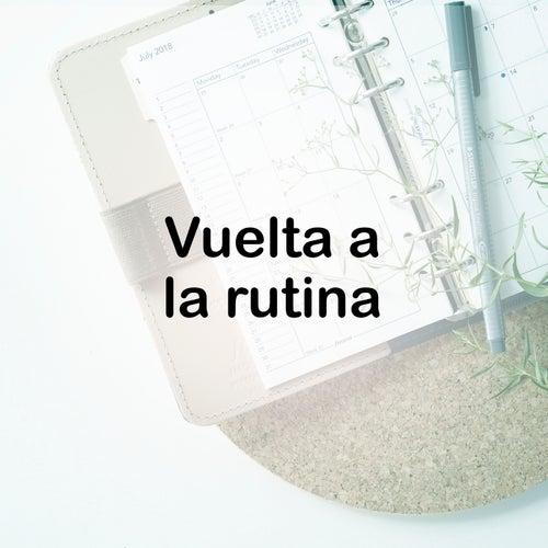 Vuelta  a la Rutina de Various Artists