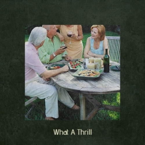 What A Thrill by Various Artists