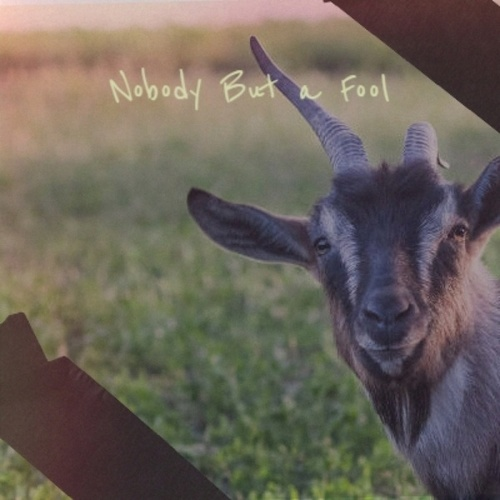 Nobody But a Fool de Various Artists