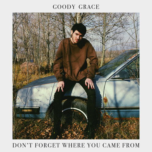 Don't Forget Where You Came From van Goody Grace