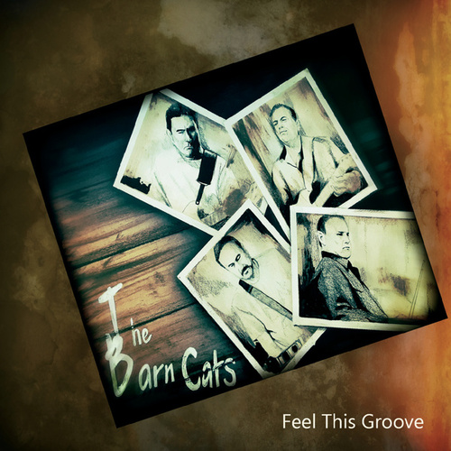 Feel This Groove by The Barn Cats
