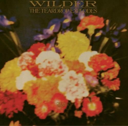 Wilder by The Teardrop Explodes