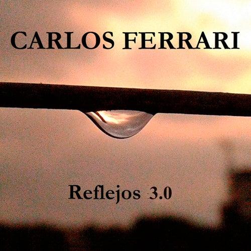 Reflejos 3.0 de Carlos Ferrari