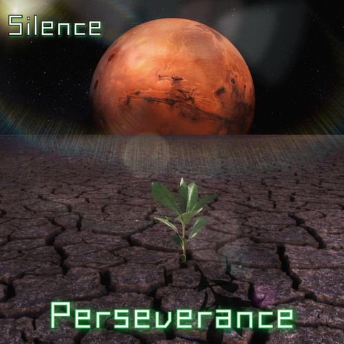 Perseverance by Silence