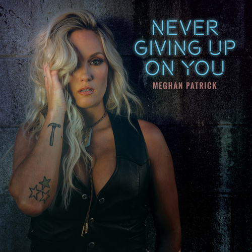 Never Giving up on You de Meghan Patrick