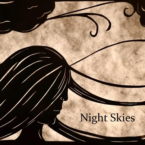 Night Skies (feat. The Potion Kings) by Sue Smith
