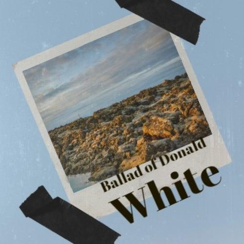 Ballad of Donald White von Big Bill Broonzy, Bob Dylan, Elmer Bernstein, Chet Atkins, Smokey Robinson