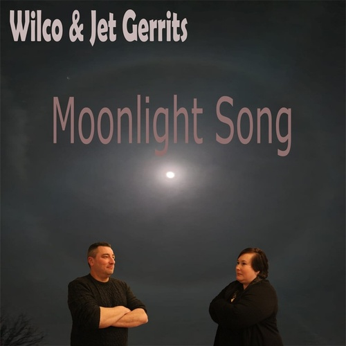 Moonlight Song de Wilco