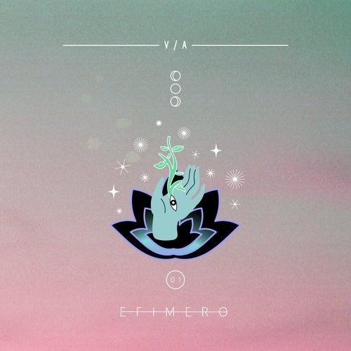 Efímero Va 01 by Various Artists
