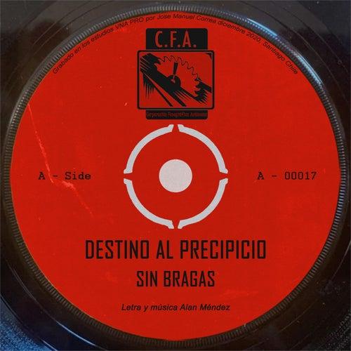 Destino al precipicio de Sin Bragas