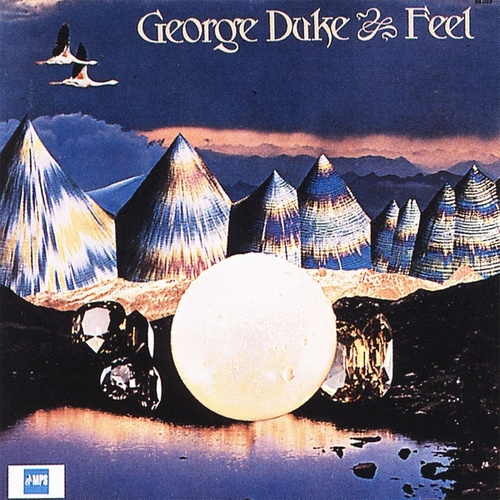 Feel von George Duke