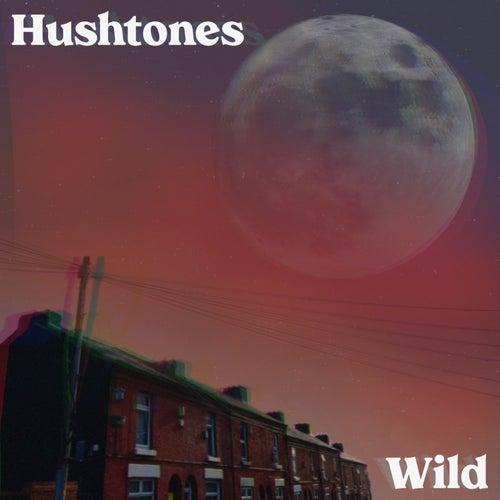 Wild by The Hushtones