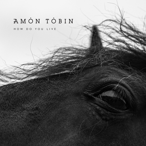 How Do You Live by Amon Tobin