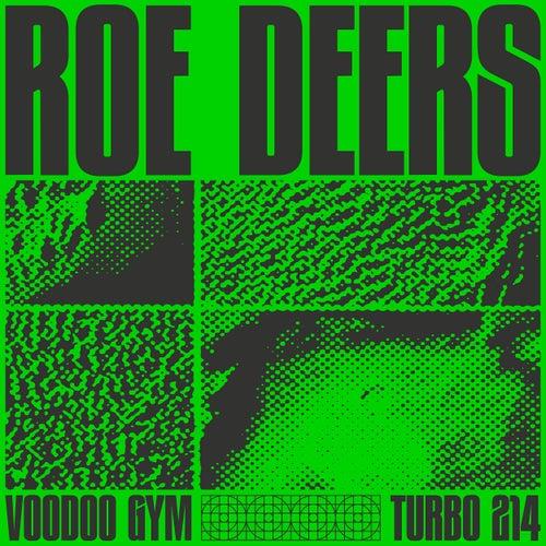Voodoo Gym by Roe Deers