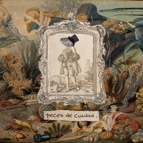 Peces de Ciudad by Juan Manuel Besteiro