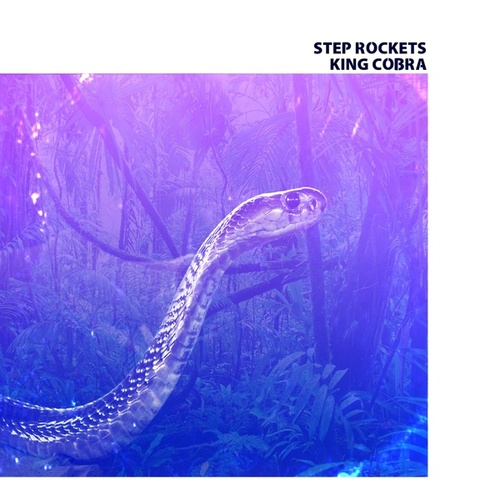 King Cobra by Step Rockets