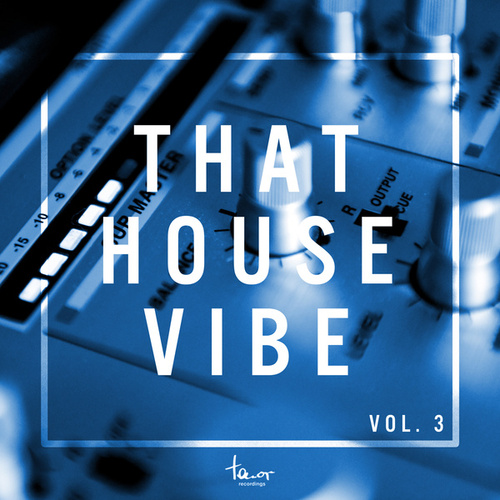 That House Vibe, Vol. 3 von Various Artists