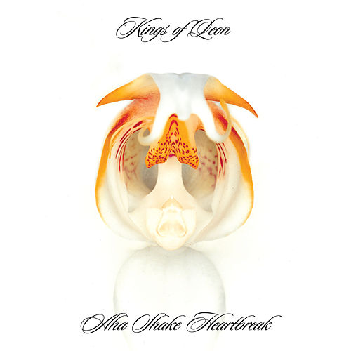 Aha Shake Heartbreak by Kings of Leon