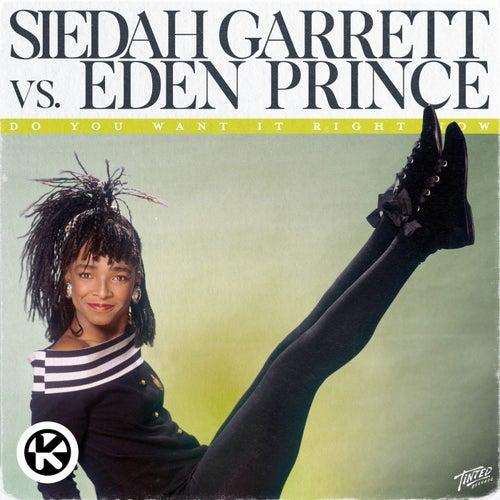 Do You Want It Right Now (Siedah Garrett vs. Eden Prince) von Siedah Garrett