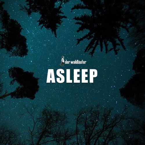 Asleep von Der Waldläufer