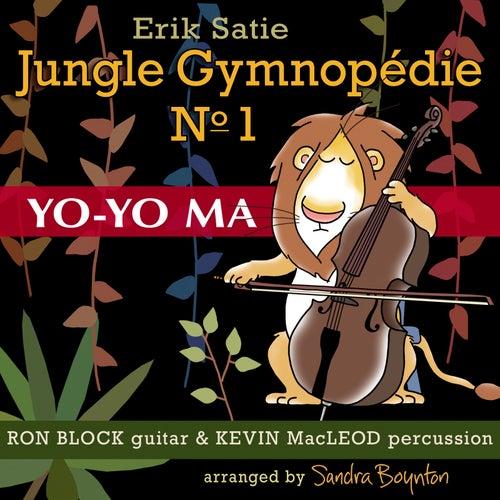 Jungle Gymnopedie No. 1 by Yo-Yo Ma