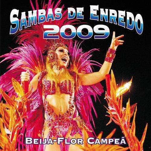 Sambas De Enredo Das Escolas De Samba - Carnaval 2009 de Various Artists