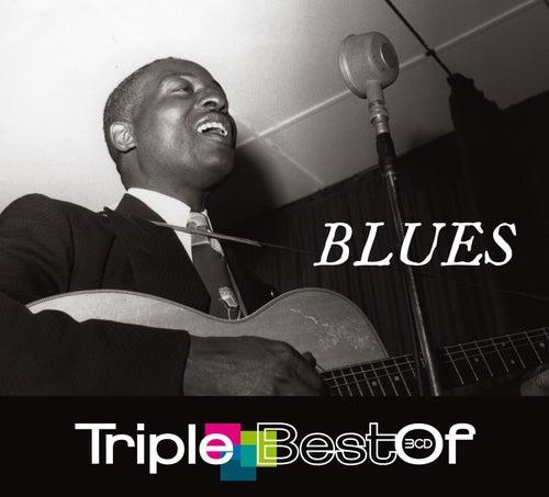 Triple Best Of Blues de Various Artists