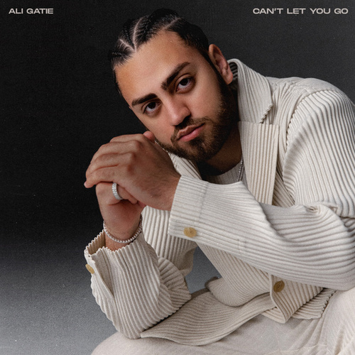 Can't Let You Go by Ali Gatie