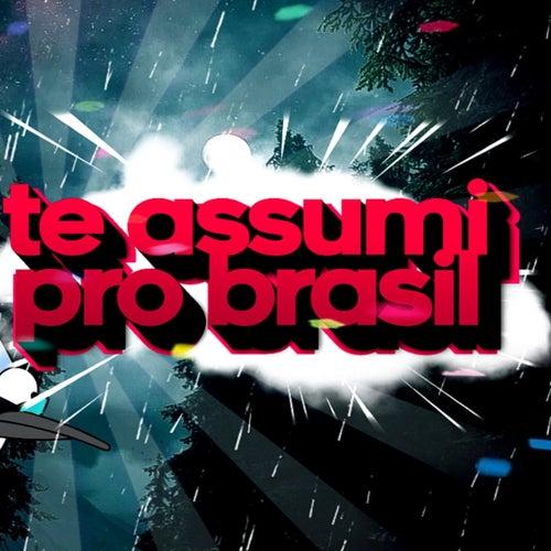 TE ASSUMI PRO BRASIL (FUNK REMIX) by DJ Samir