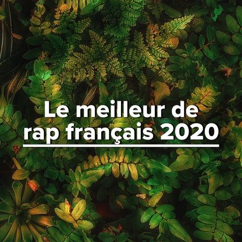 Le meilleur de rap français 2020 de Various Artists