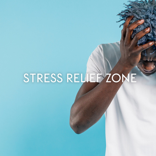 Stress Relief Zone – Slower Tempo Helps You Quiet Your Mind von Ibiza Chill Out