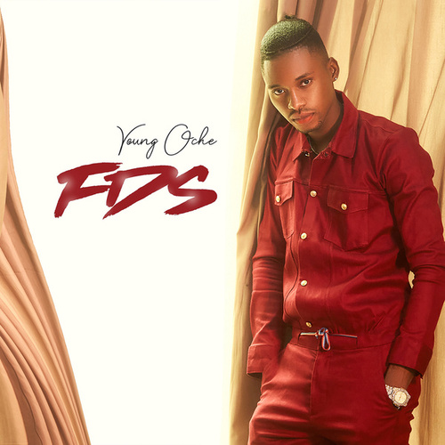 FDS by Young Oche
