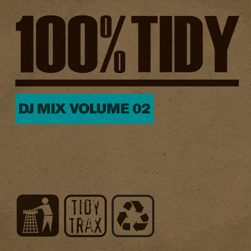 100% Tidy, Vol. 2 by Various Artists