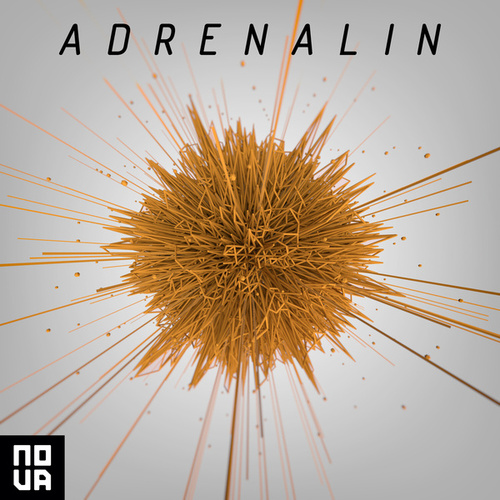 Adrenalin de Lee Groves