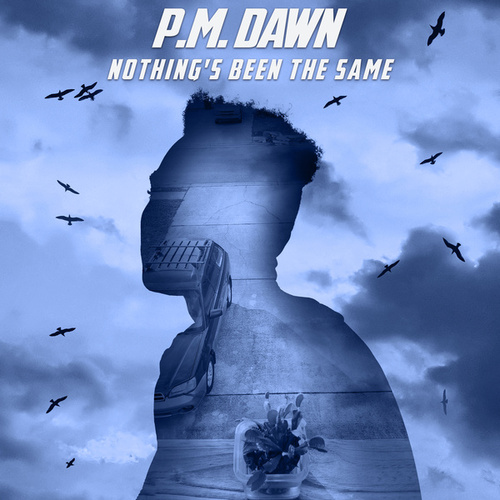 Nothing's Been the Same by P.M. Dawn
