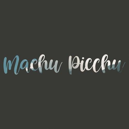 Machu Picchu de Laura Naranjo