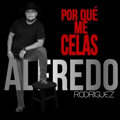 ¿Por Que Me Celas? de Alfredo Rodriguez