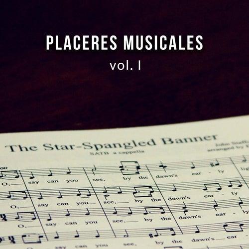 Placeres musicales vol. I de Various Artists