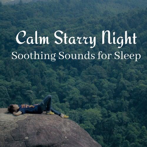 Calm Starry Night: Soothing Sounds for Sleep by Deep Sleep Music Academy