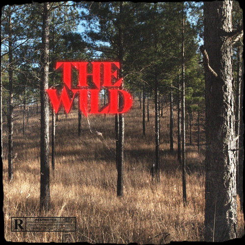 The Wild by Dream