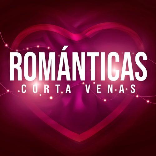 Románticas Corta Venas by Various Artists