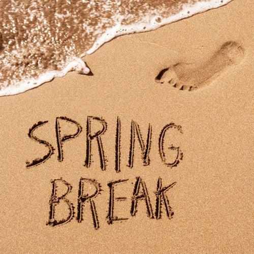 Spring Break de Various Artists