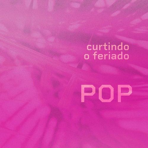 Curtindo o Feriado Pop de Various Artists